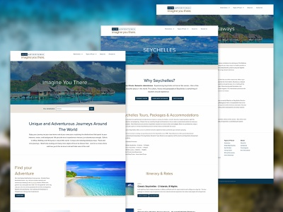 NewAdventures.com design & development web development ui web design