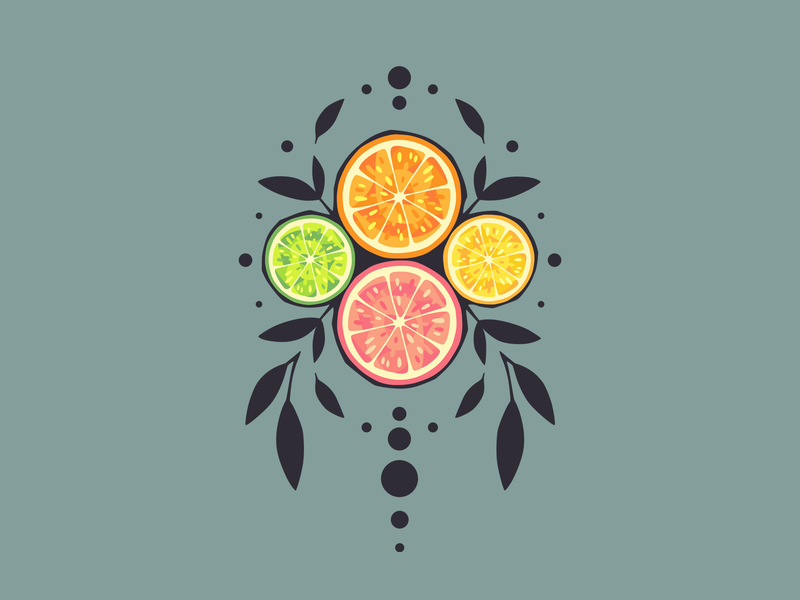 Citrus fruity fruits fruit citrus illustration minimal vector shirt design flat design