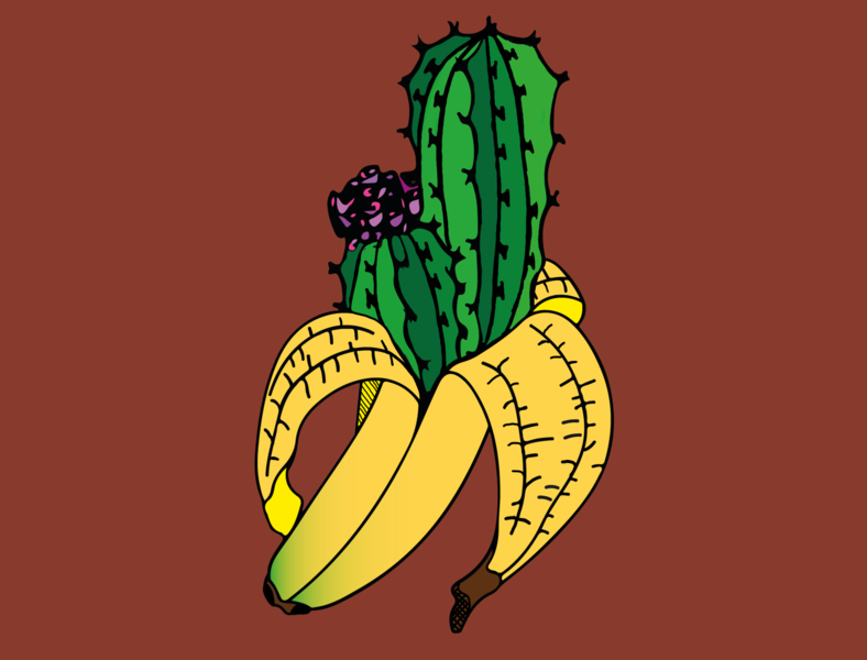 Bananacactus vector minimal logo illustrator illustration graphic design flat design branding art