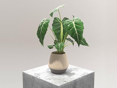 3D Plant ui motion design icon branding landing mainpage web plant motion animation 3d 3d animation 3d ilustration