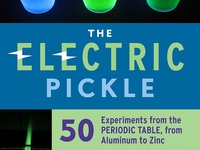 The Electric Pickle book cover