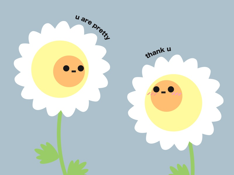 Cute chamomiles illustration minimal vector flat design