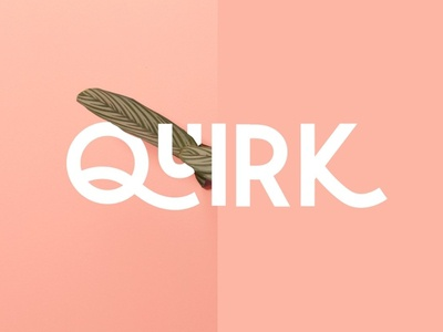 Quirk Fonts illustration design app