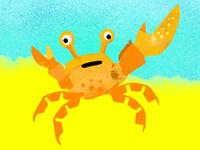 Male Fiddler Crab for The Dodo