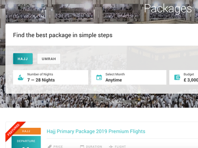 Travel package filter clean wordpress web design