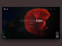 HTML template (WIP)