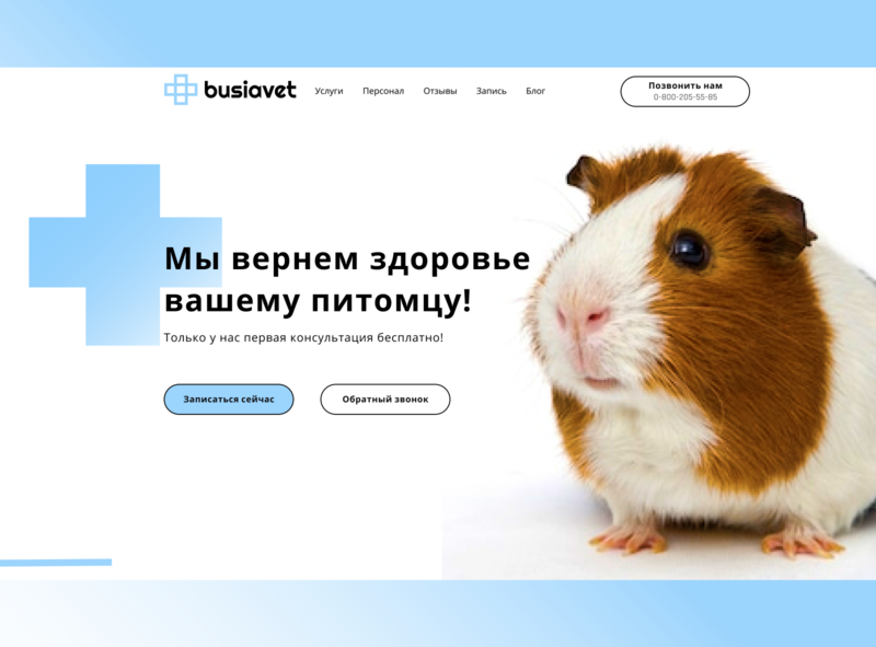 Corporative website for veterinary clinic ux ui webdesign website figma