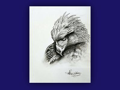 Eagle eye inspiration drawing sketch dark white black simple traditional pencil hand drawn hand powerful elegant majestic bird animal illustration art falcon eagle