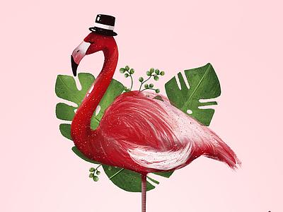 Flamenco  Illustration colombia animals illustration illustrator flamengo