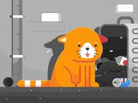 Sad Derp Cat