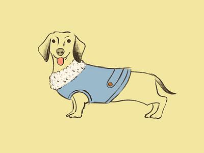 Dachshund illustration dog salchicha dachshund