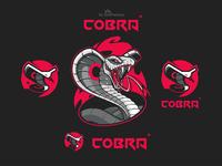Cobra brand identity kit