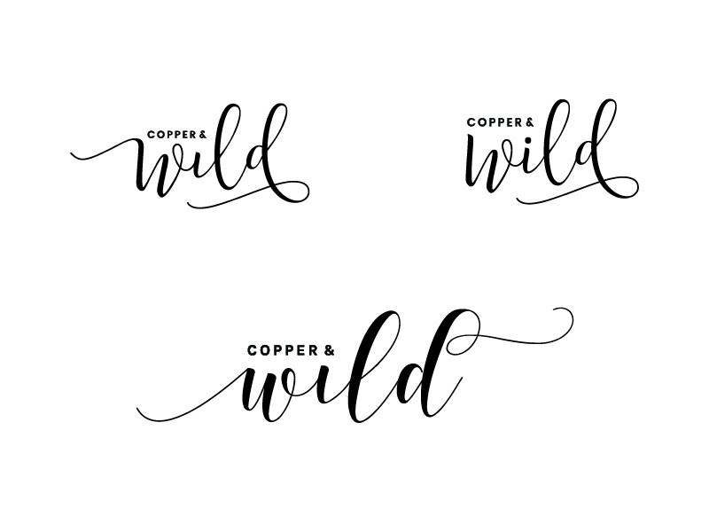 Copper and Wild developments personal brand illustrator identity type wip ideas logo typography brand