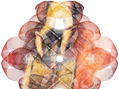 Möbius medley illusion halftones peace meditation streetart figurative stilllife peopleisee vectorillustration vectorart vector illustrator illustration indianart karthikshetty atmarasa