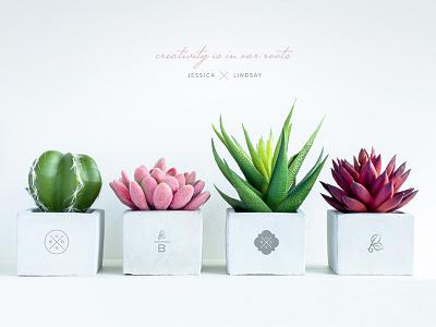 Buds Plants& Secondary Marks copywriting plantshop plants buds bud design identity logo design logo branding brand