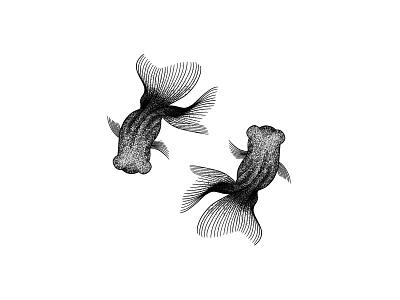 Goldfish stipple art polygon art pointilism line drawing ink drawing geometric art dotwork goldfish black and white