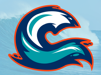 Wave3 wave logo hockey