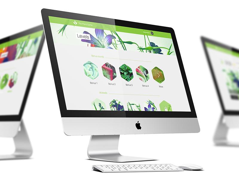 The Plant Game quiz bonus game green webdesign design web plant