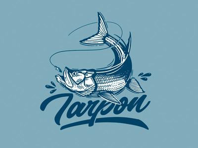 Tarpon Illustration