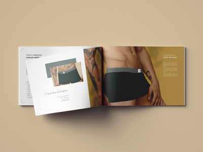 Brochure - Mister Greenzzly drawing bamboo man brochure nature logotype underwear logo lingerie illustration grizzly graphic fashion design branding brand bear