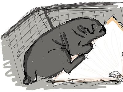 Joe the Pug design minimal flat illustration