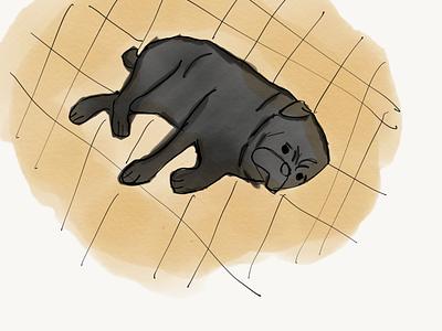 Sleeping Joe animation flat design minimal illustration
