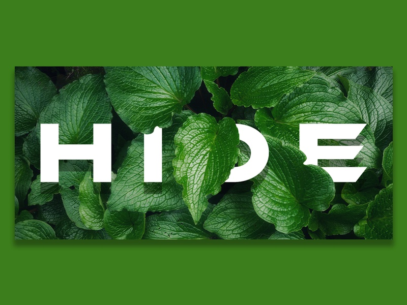 Hide graphic design illustrator vector branding icon design logo illustration