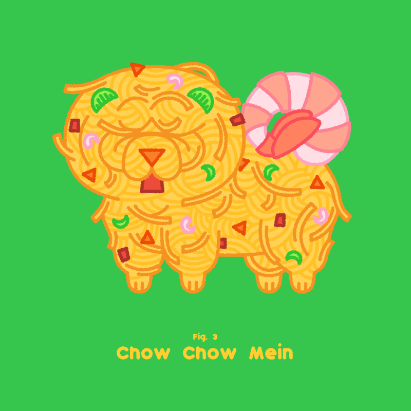 Fig 003 chow chow mein