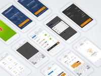 Crazy Mobile Application