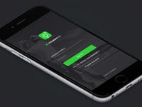 MPP App - WIP