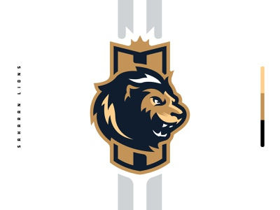 Saharan Lions Branding Package lions lion football mascot badge icon illustration design vector branding brand sport logo sports