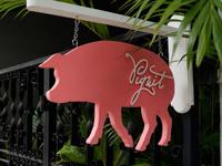 Pigwit Logo, Live in Bangkok
