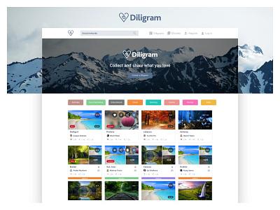 Website Design: Diligram ui ux website design landing page design illustration