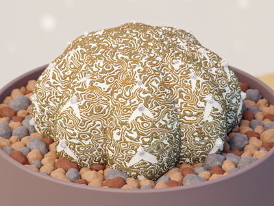 astrophytum illustration blender 3d