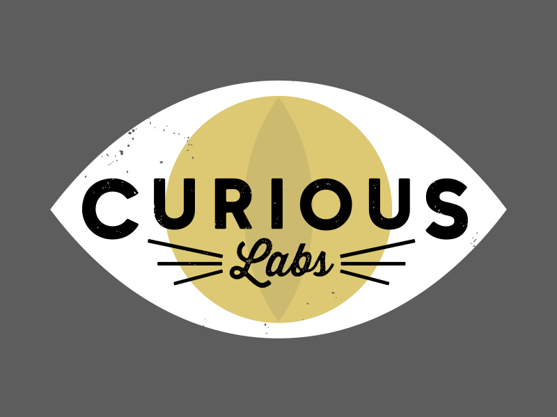 Curious labs concept eye cat wiskers logo