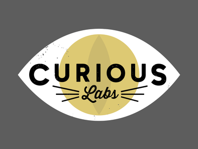 Curious labs concept