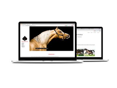 Stolen Aces Farm Website photography typography ux ui website design web design branding