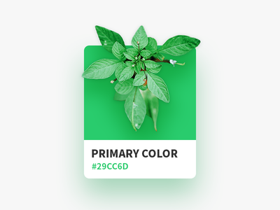 Color Card green card color