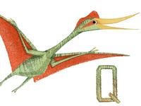 Q is for Quetzalcoatlus