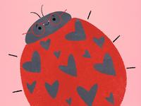 ❤️🐞 Love Bug