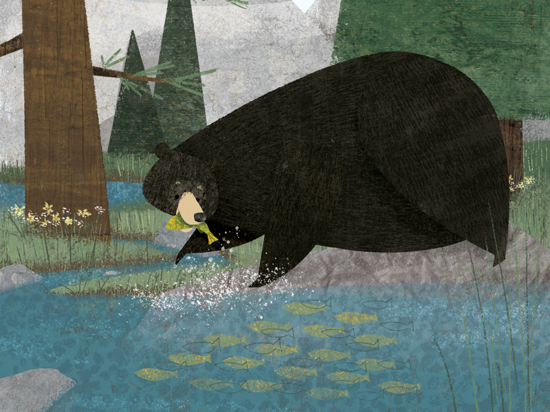 Bear with me while I grab a snack animals animal cute nature story picture book childrens book illustration bear