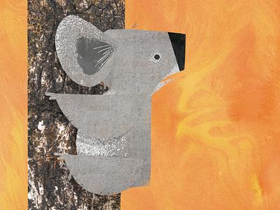 Australian Brushfires childrens book illustration kidlit childrens illustration fires australia koala book illustration kidlitart picture book childrens book illustration