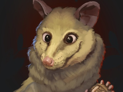 Opossum illustration portrait opossum animal painting illustration