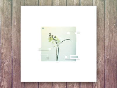 Arthur- embassy orchid flower abstract wood music album art