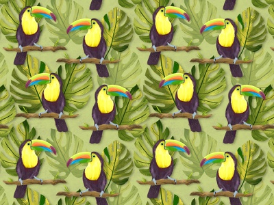 Toucans pattern childrens illustration kids art procreate art procreateapp procreate illustration pattern designer surface pattern pattern design pattern