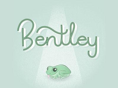 Bentley the Frog