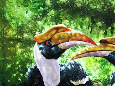 Hornbill bird hornbill bird birds couple green jaydenart love trees tree paint two