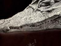 Crocodile full size image
