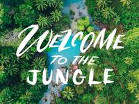 Jungle Type Treatment