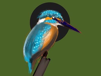 kingfisher digital painting photoshop render flight kingfisher bird bird illustration birds render